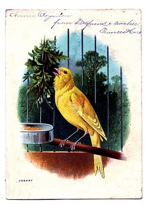 Vintage Clip Art - Sweet Canary in Cage - The Graphics Fairy