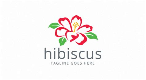 Hibiscus - Flower Logo - Logos & Graphics